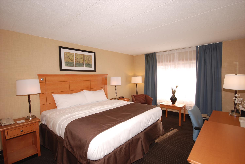 Room - Best Western Danbury Hotel Bethel