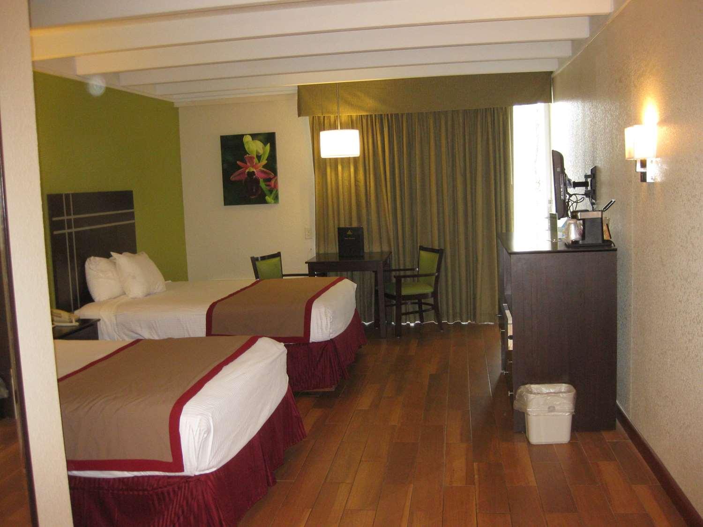 Room - Best Western Orlando West Hotel