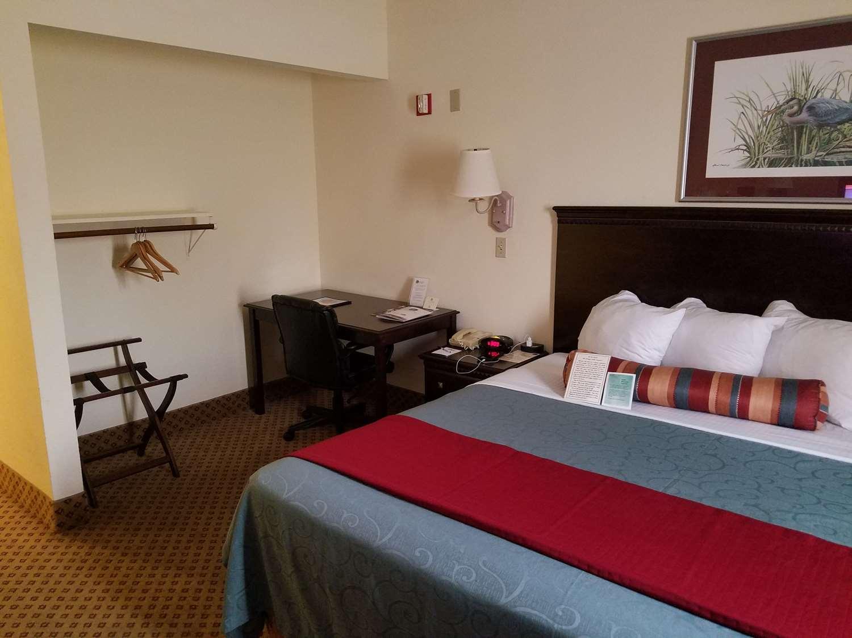 Room - Best Western Gateway Grand Hotel Gainesville