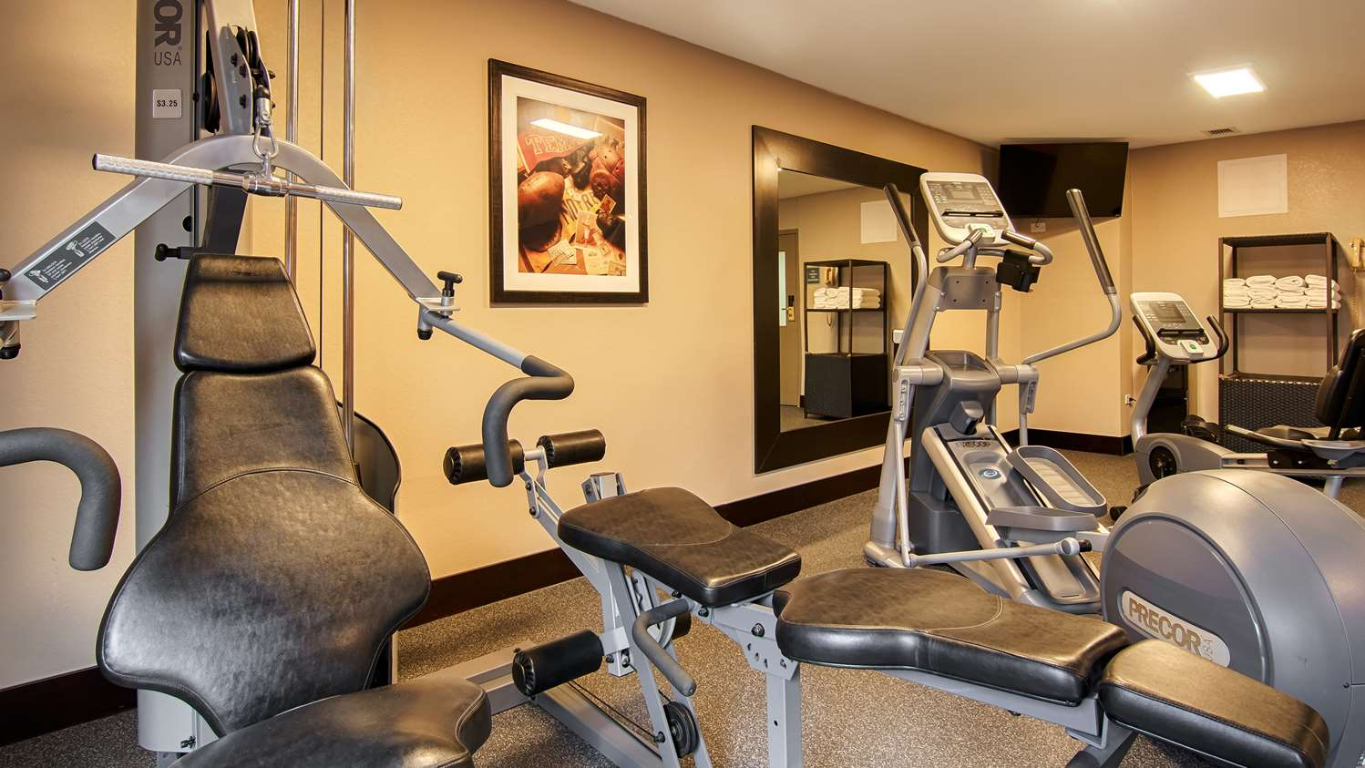 Fitness/ Exercise Room - Best Western Plus Chicagoland Countryside Hotel