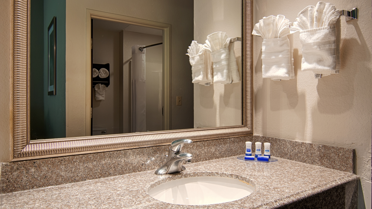 Room - Best Western Plus O'Hare South Hotel Franklin Park