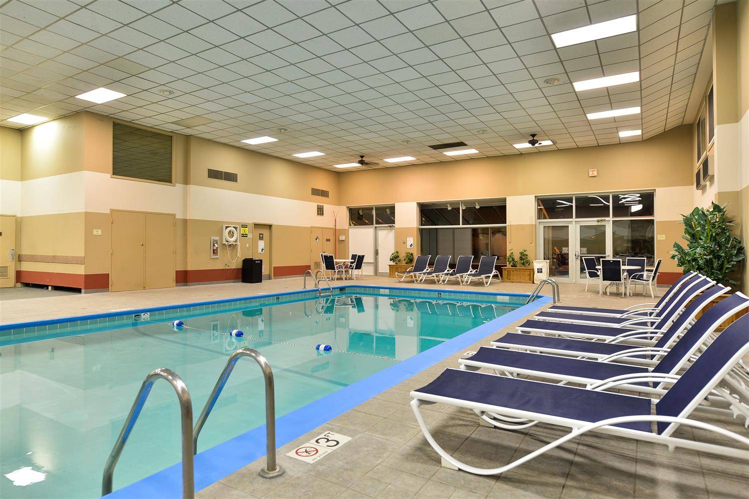 Pool - Best Western Regency Inn Marshalltown