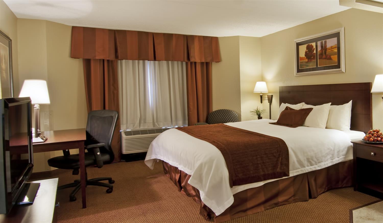 Room - Best Western Plus Dakota Ridge Inn Eagan