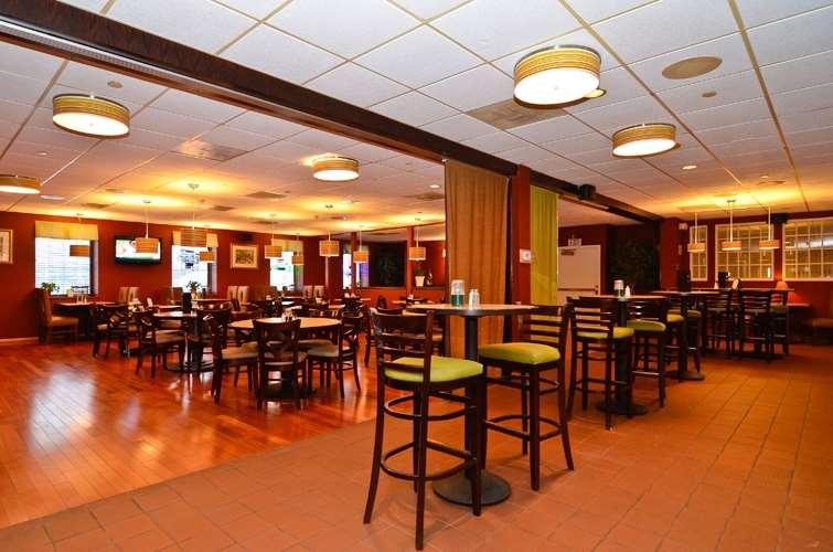 Bar - Best Western Watertown Fort Drum Hotel