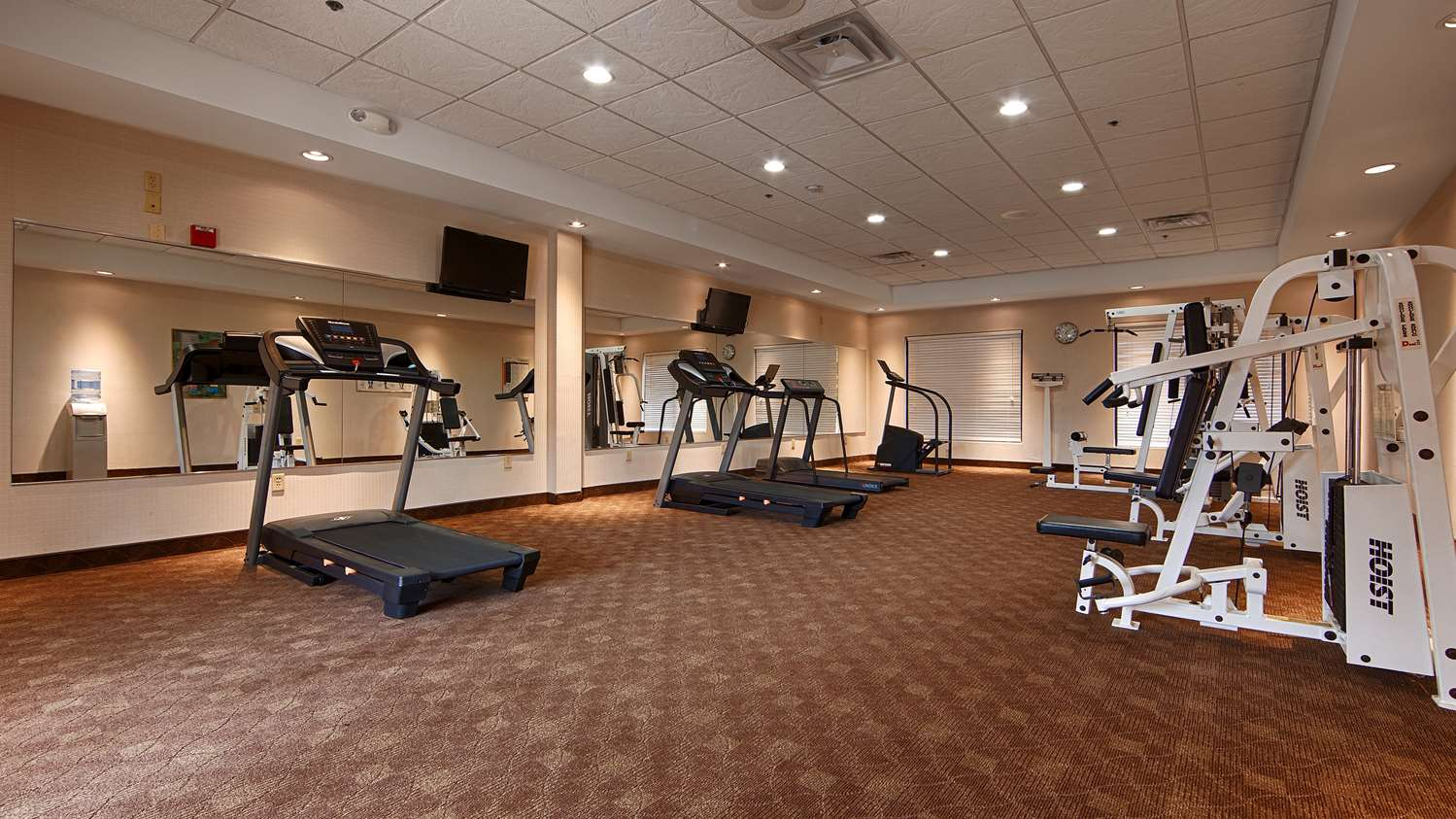 Fitness/ Exercise Room - Best Western Plus Galleria Inn & Suites Cheektowaga