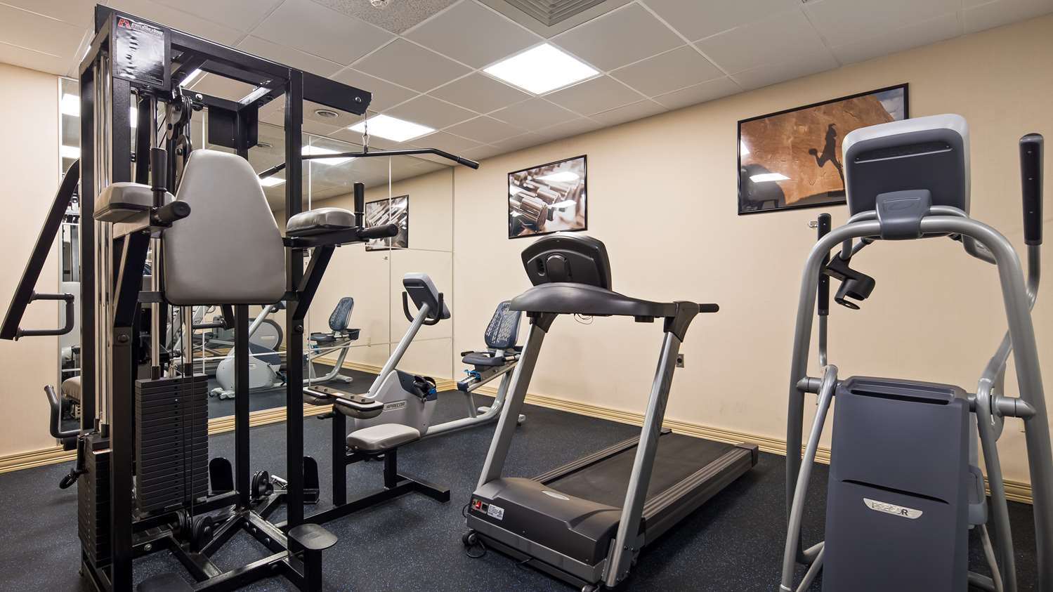 Fitness/ Exercise Room - Best Western Plus Reading Inn & Suites Shillington
