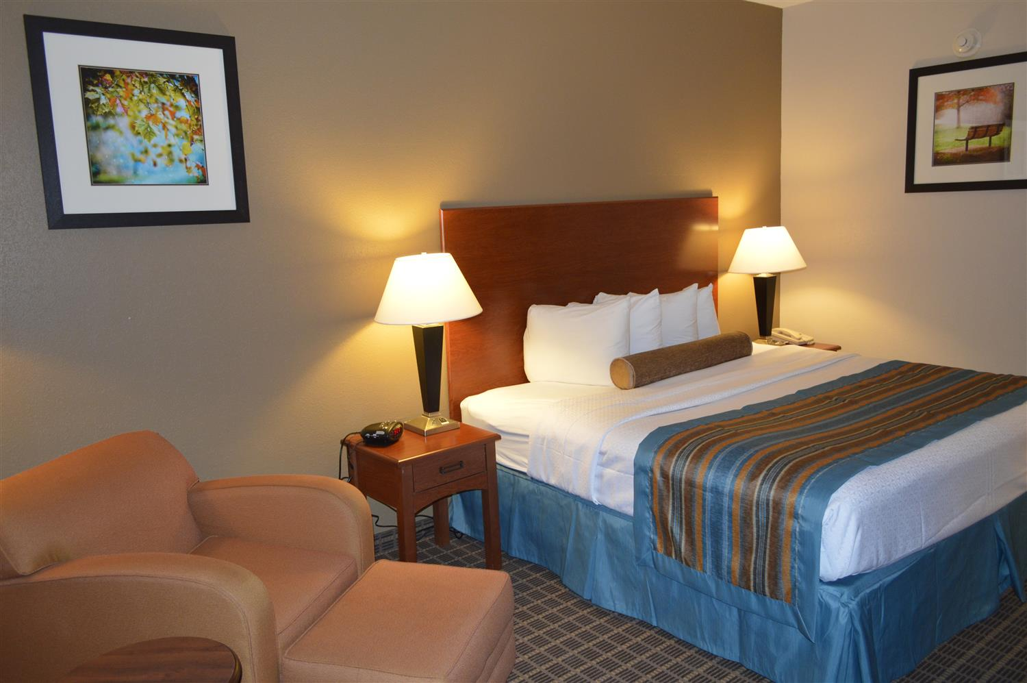 Room - Best Western Orange Inn & Suites