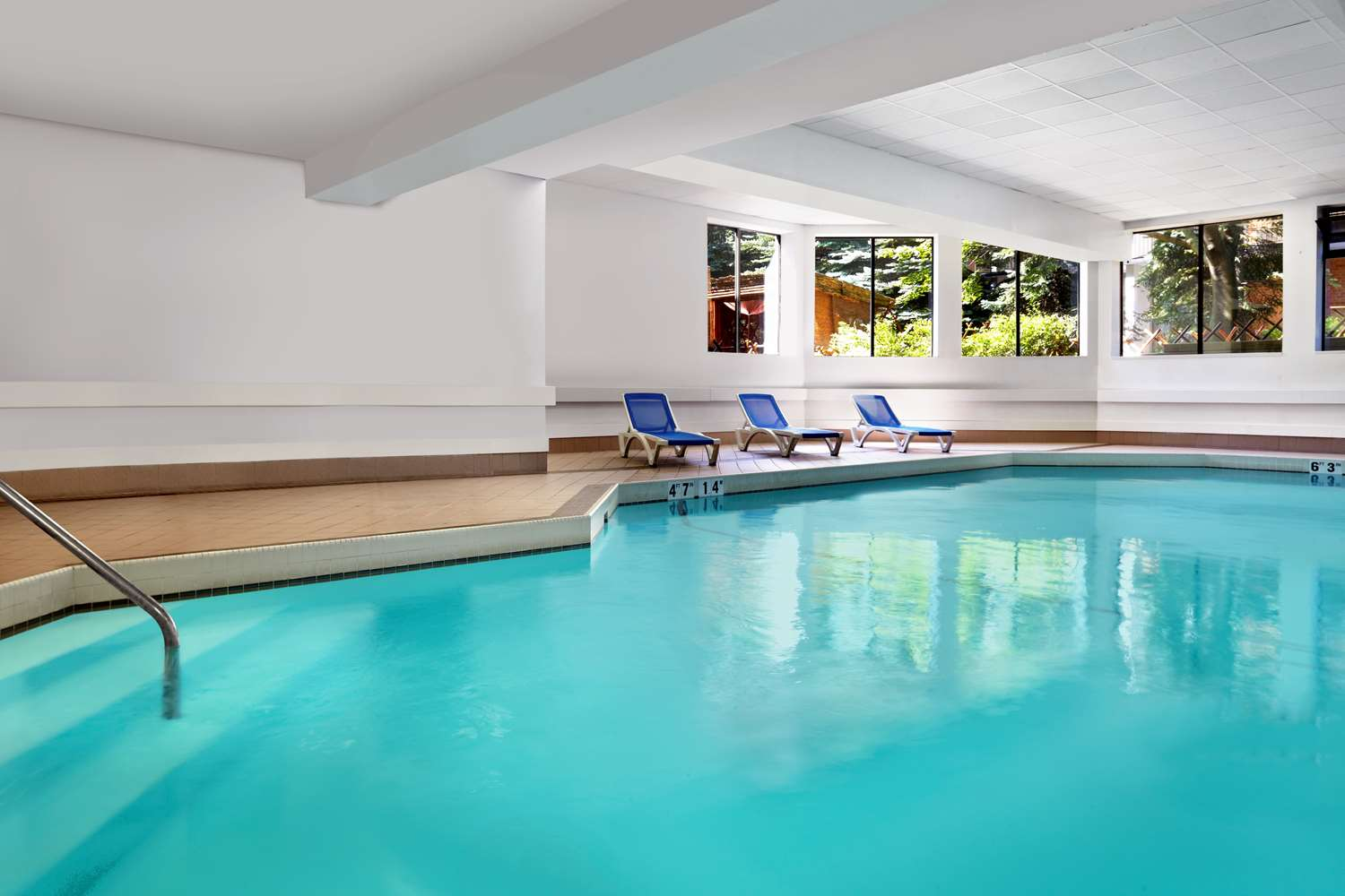 Pool - Best Western Parkway Hotel Richmond Hill
