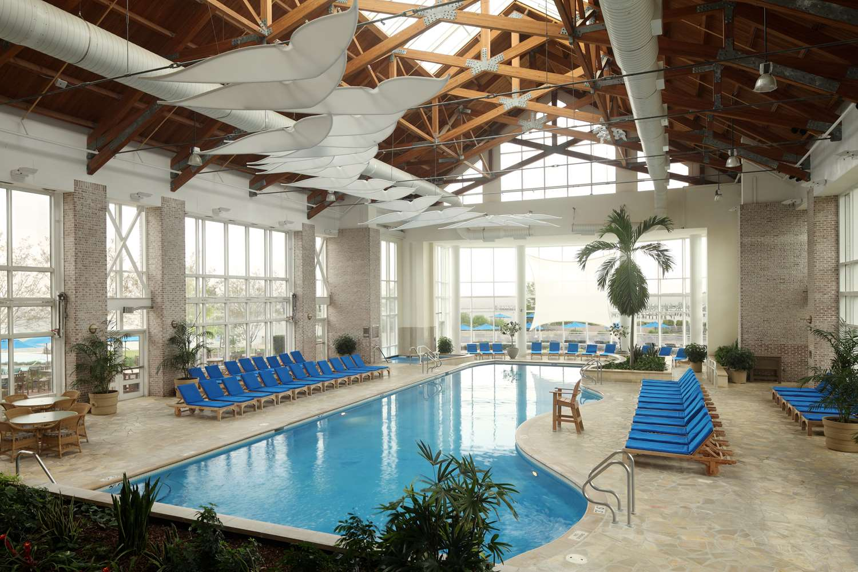 Pool - Hyatt Regency Chesapeake Bay Resort Cambridge