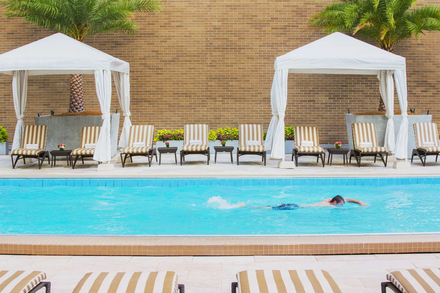 Pool - Hyatt Regency Hotel New Orleans