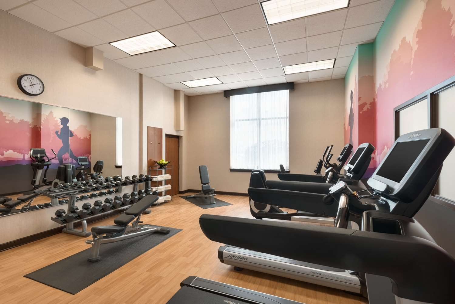 Fitness/ Exercise Room - Hyatt Place Hotel Schaumburg