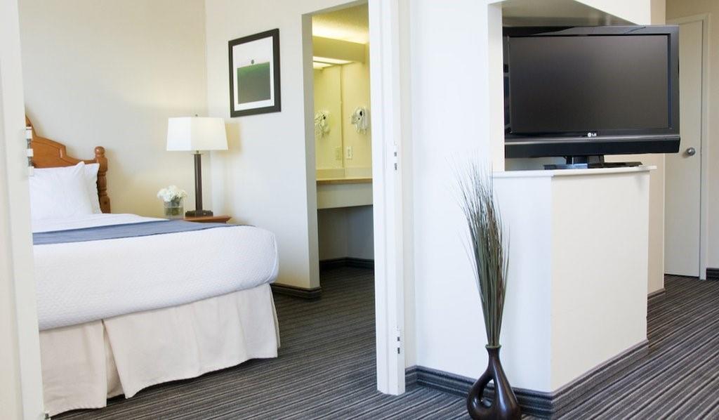 Suite - Cambridge Suites Hotel Sydney
