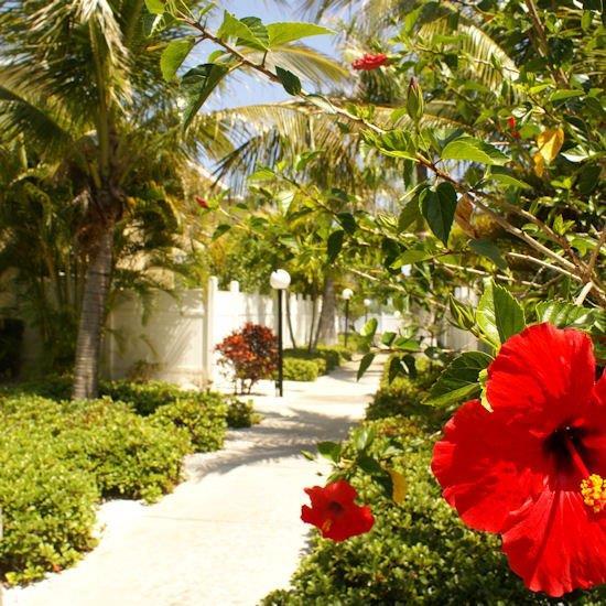 Exterior view - Barefoot Beach Resort Indian Shores