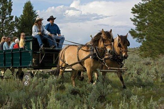 Chuck Wagon Ranch Experience at Paws Up