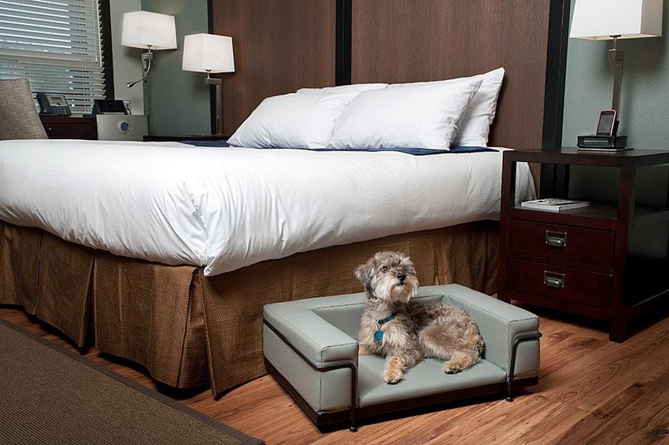 Room - Centro Motel Calgary