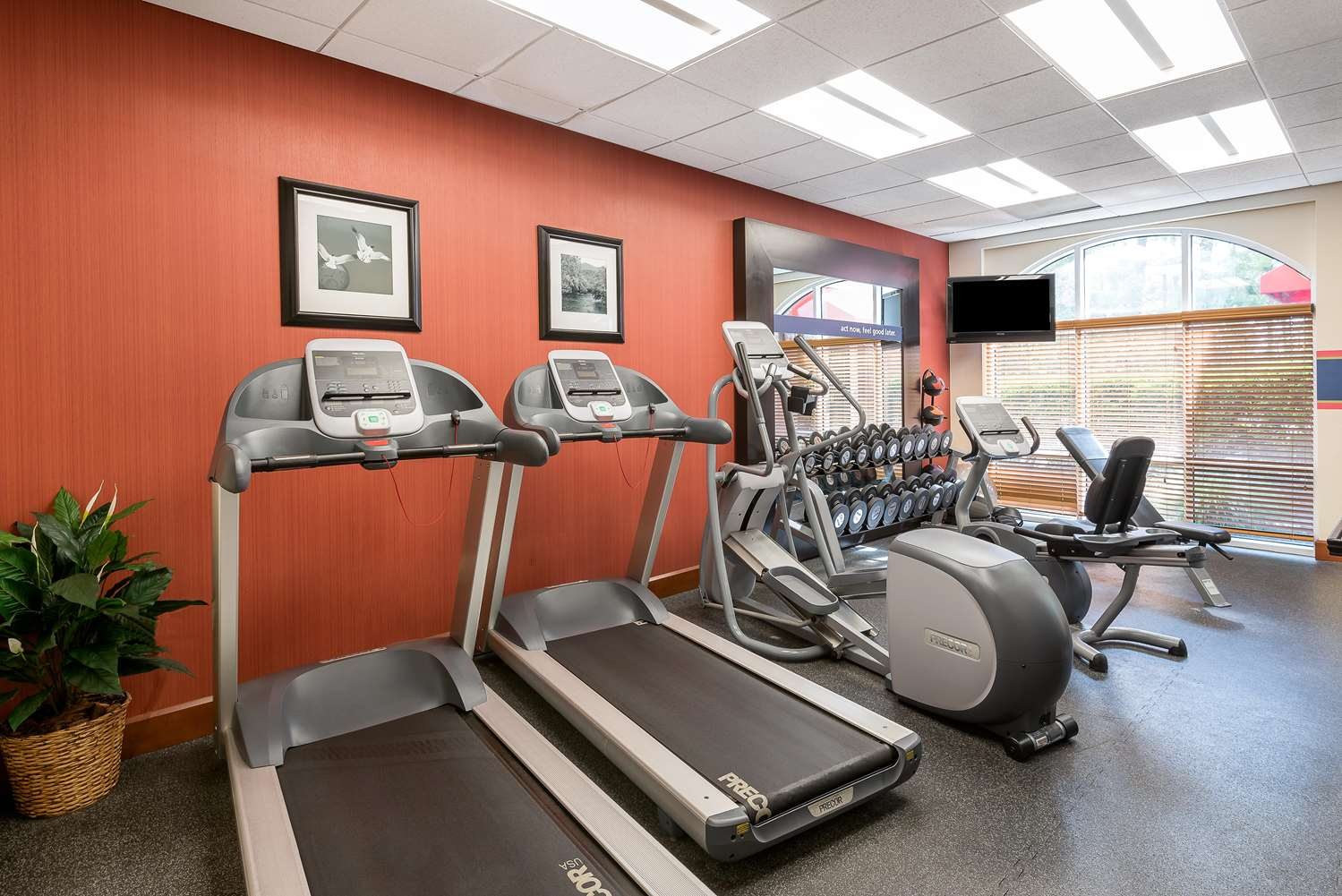 Fitness/ Exercise Room - Hampton Inn & Suites North I-95 Florence