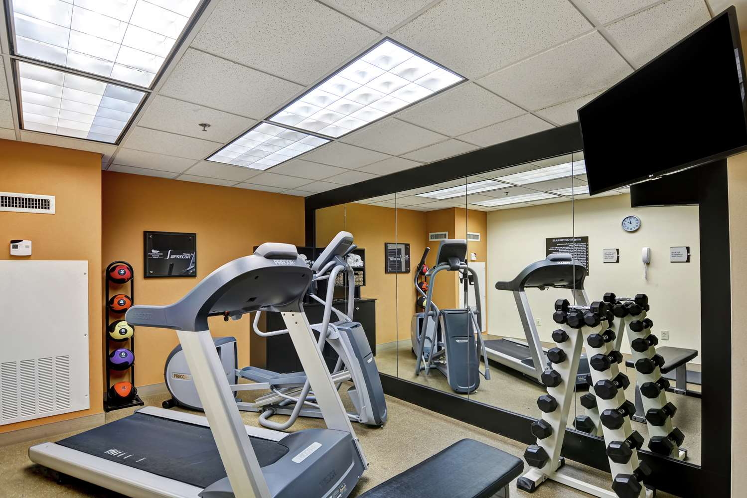 Fitness/ Exercise Room - Homewood Suites by Hilton Fayette Mall Lexington