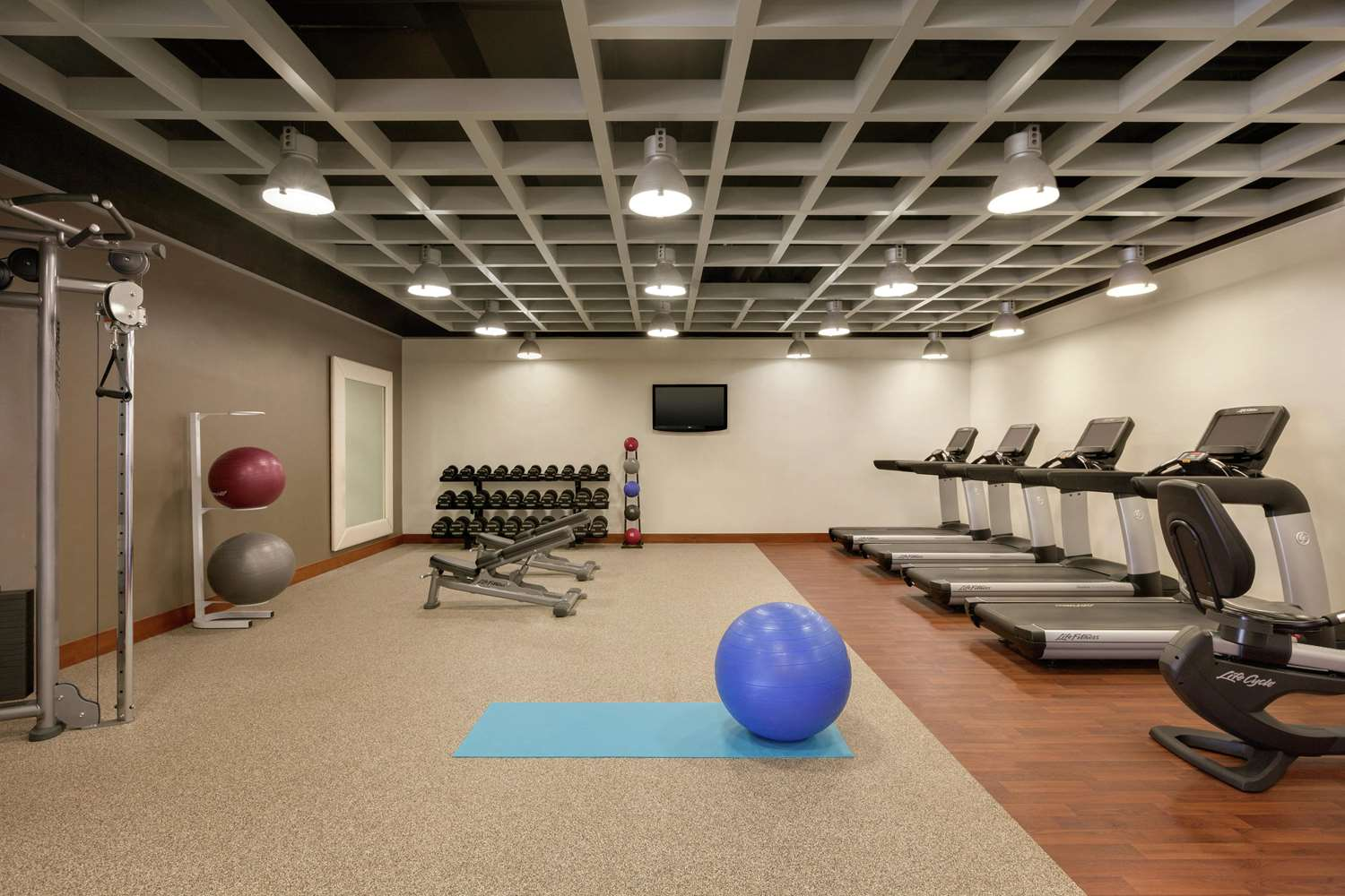 Fitness/ Exercise Room - Hilton Hotel BWI Airport Linthicum