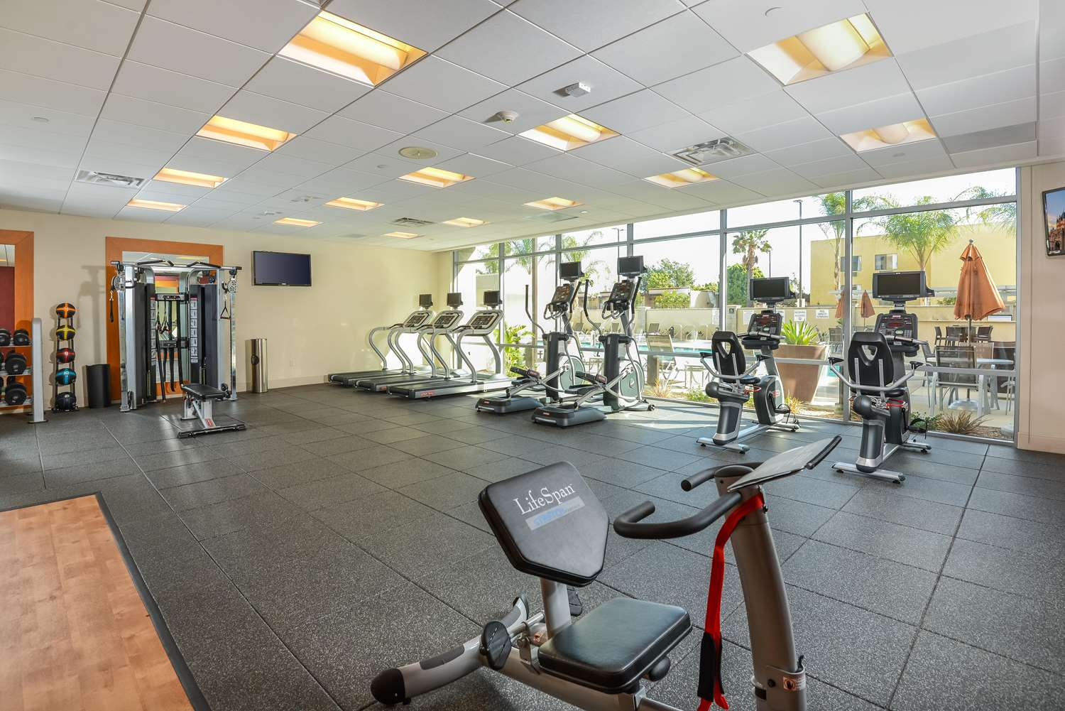Fitness/ Exercise Room - Homewood Suites by Hilton Resort Convention Center Anaheim
