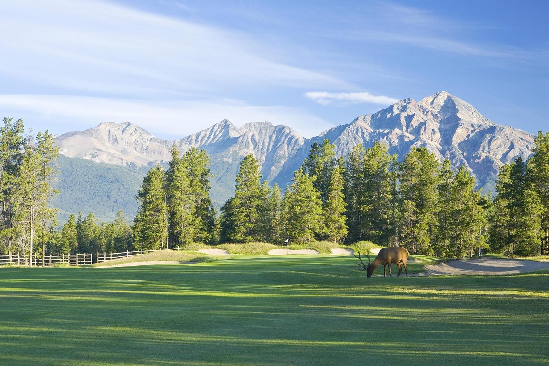 Golf - Fairmont Jasper Park Lodge