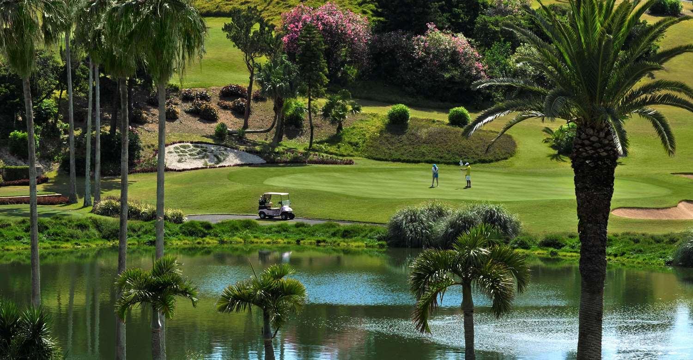 Turtle Hill Golf Club 2nd green