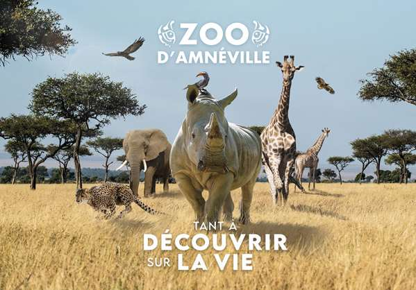 Package Zoo - Hôtel GOLDEN TULIP AMNEVILLE - HOTEL AND CASINO