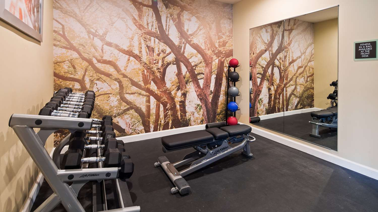 Fitness/ Exercise Room - Best Western Plus Harrisburg Mechanicsburg Hotel Enola