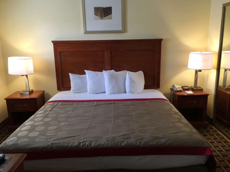 Room - Ramada Hotel ASU Tempe