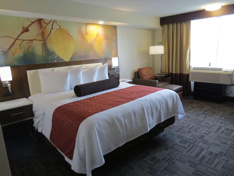 Room - Best Western Premier Milwaukee Brookfield Hotel & Suites