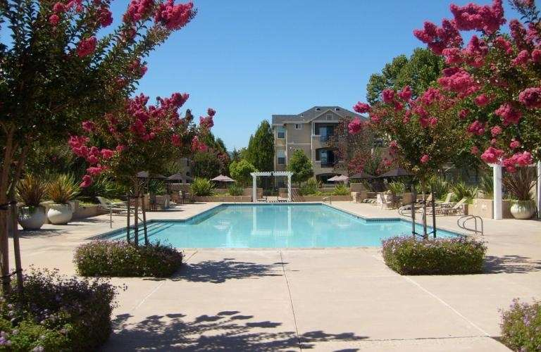 Forge Homestead Apartments Cupertino Ca See Discounts