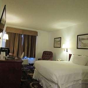 Room - Stonebridge Hotel Fort McMurray