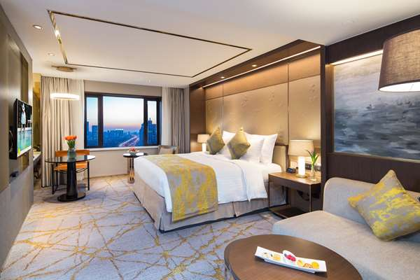 酒店 HOTEL GOLDEN TULIP SHANGHAI RAINBOW - 行政双