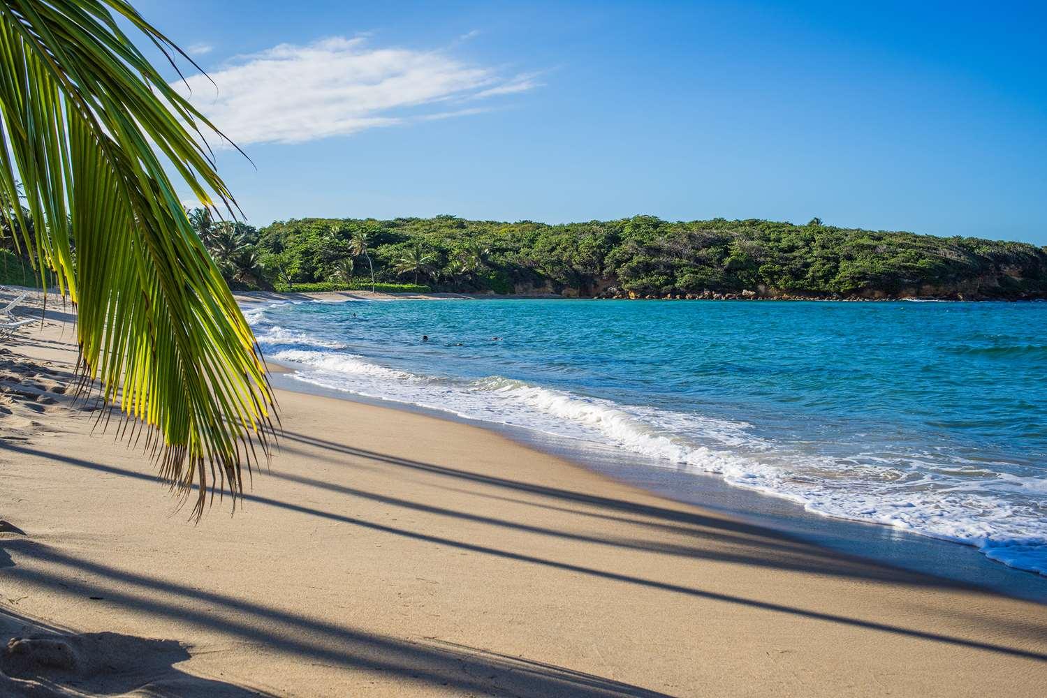 Beach - Hyatt Hacienda del Mar Resort Dorado