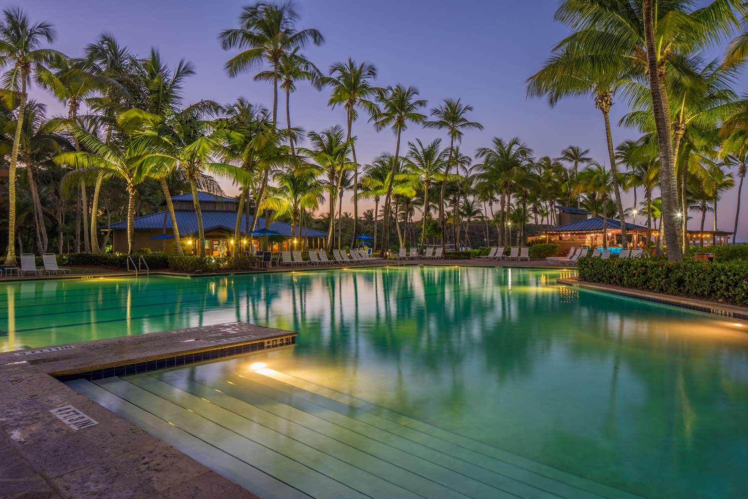 Pool - Hyatt Hacienda del Mar Resort Dorado