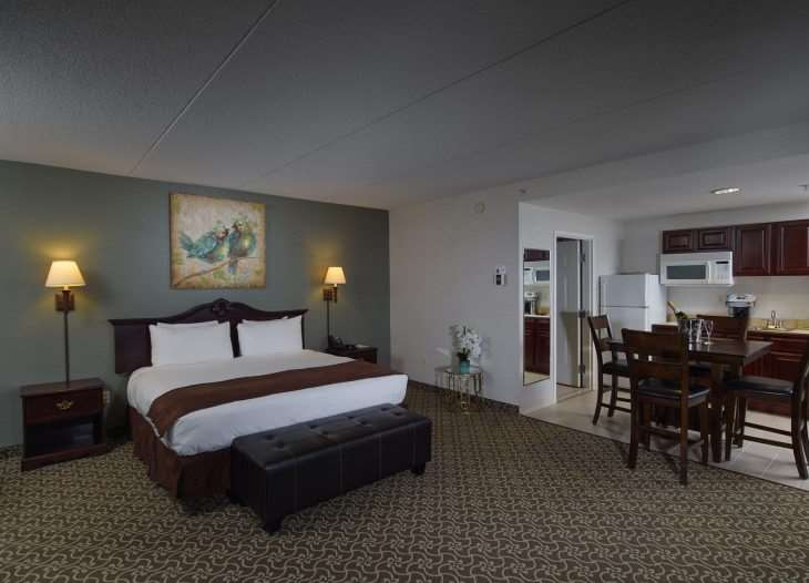 Room - D Hotel & Suites Holyoke