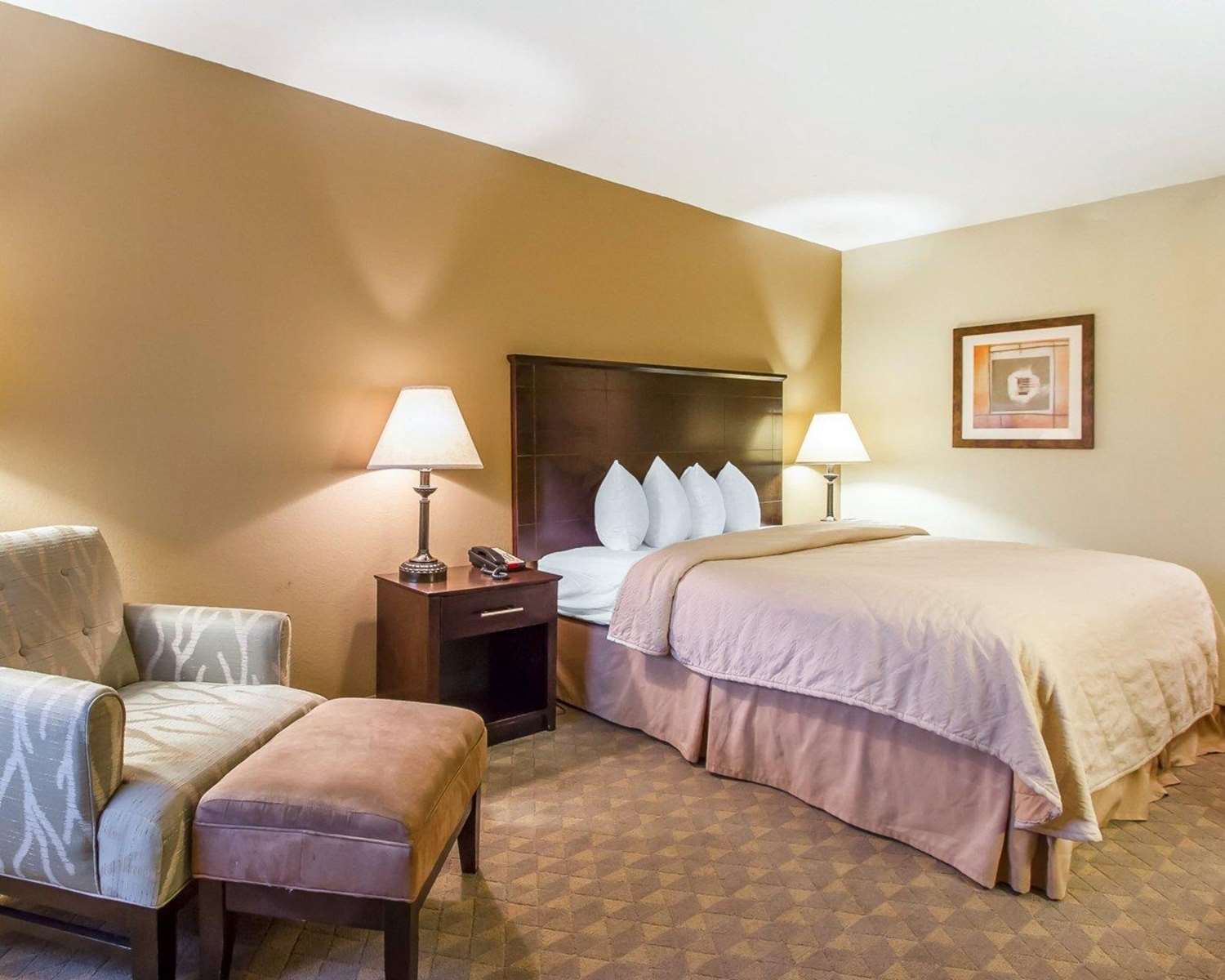 Room - Quality Inn & Suites Greenville