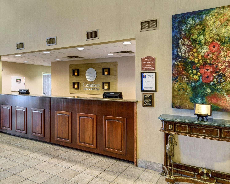 Lobby - Comfort Inn & Suites Hot Springs
