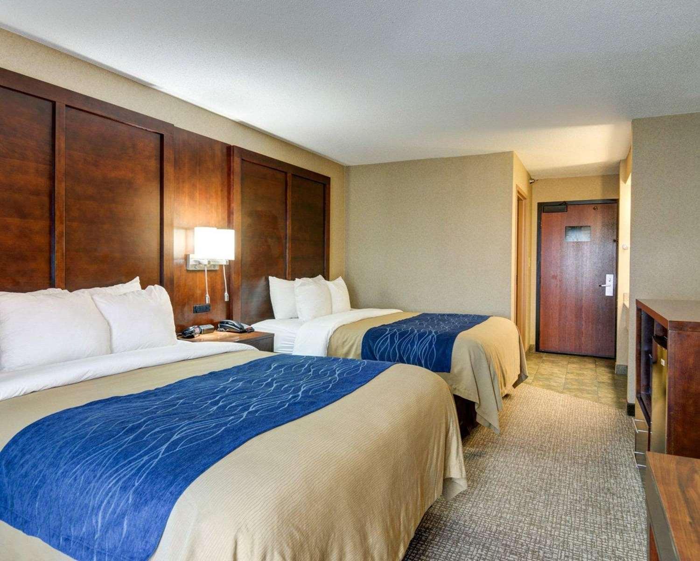 Room - Comfort Inn & Suites Hendrix College Conway