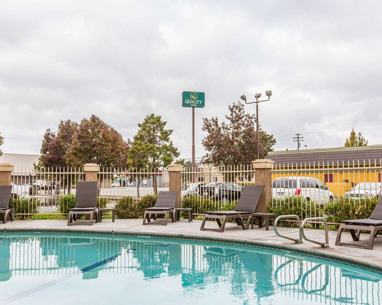 Pool - Quality Inn Modesto