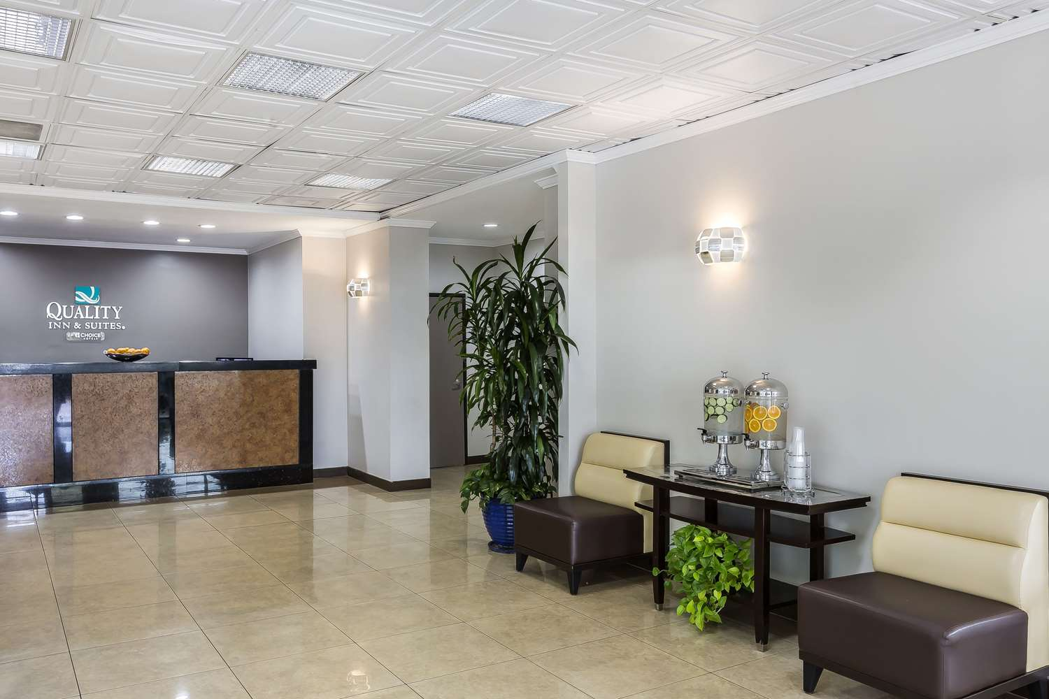 Lobby - Quality Inn & Suites LAX Airport Inglewood