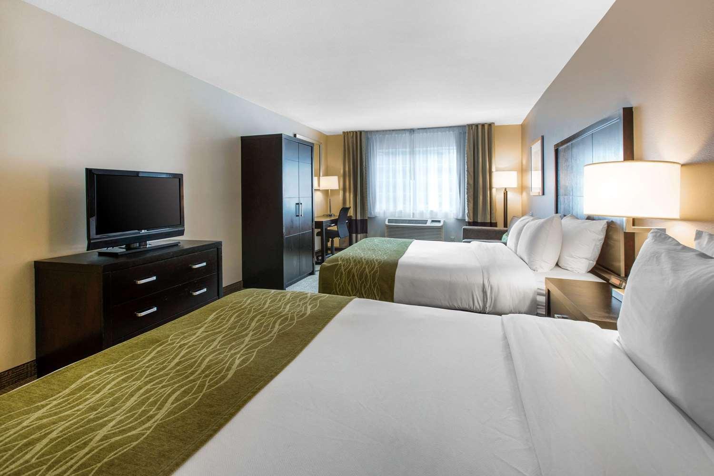 Room - Comfort Inn & Suites Zoo SeaWorld San Diego