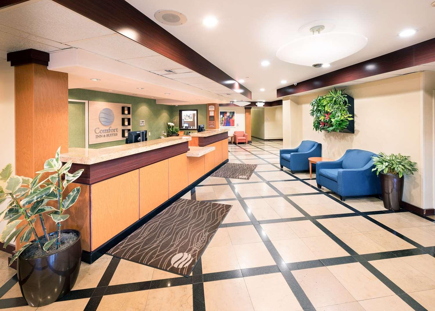 Lobby - Comfort Inn & Suites Airport Oakland
