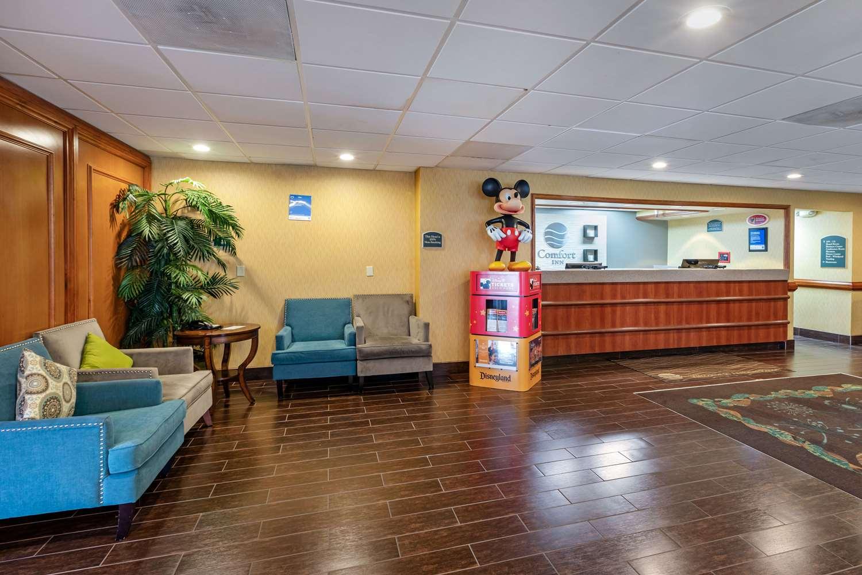 Lobby - Comfort Inn & Suites Anaheim