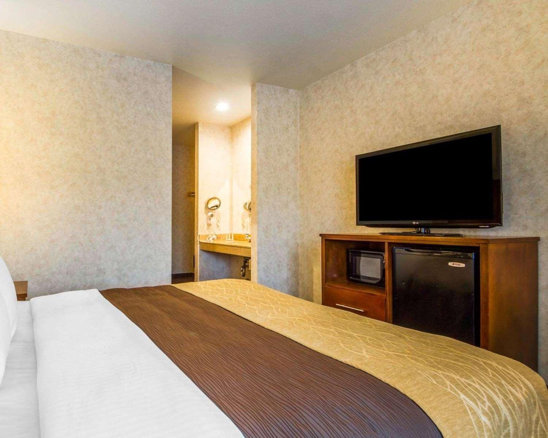 Room - Comfort Inn Watsonville