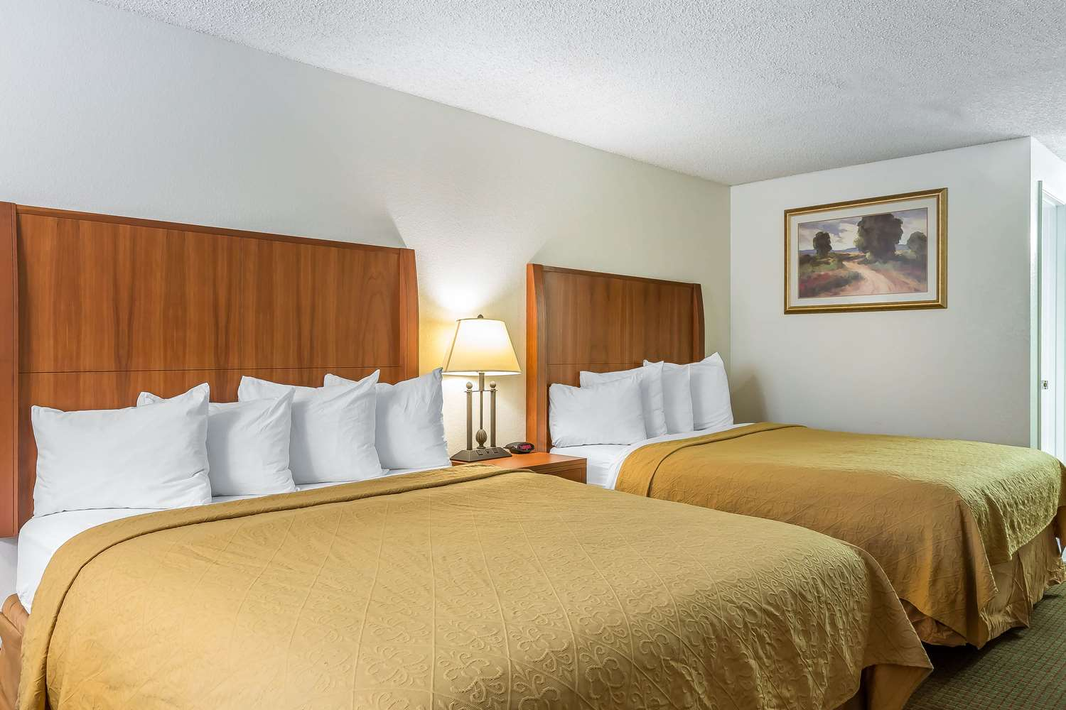 Room - Quality Inn & Suites Bakersfield