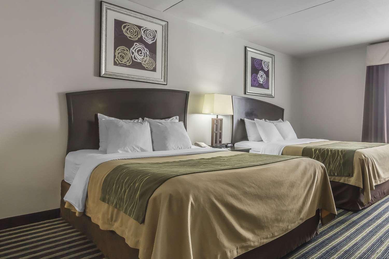 Room - Comfort Inn & Suites Moose Jaw