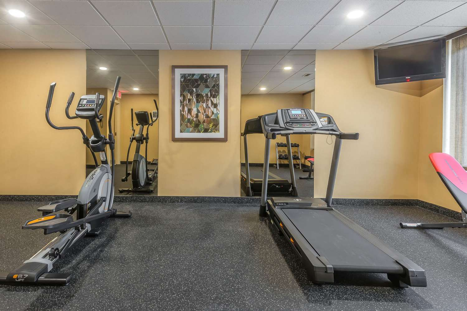 Fitness/ Exercise Room - Quality Inn & Suites Downtown Windsor