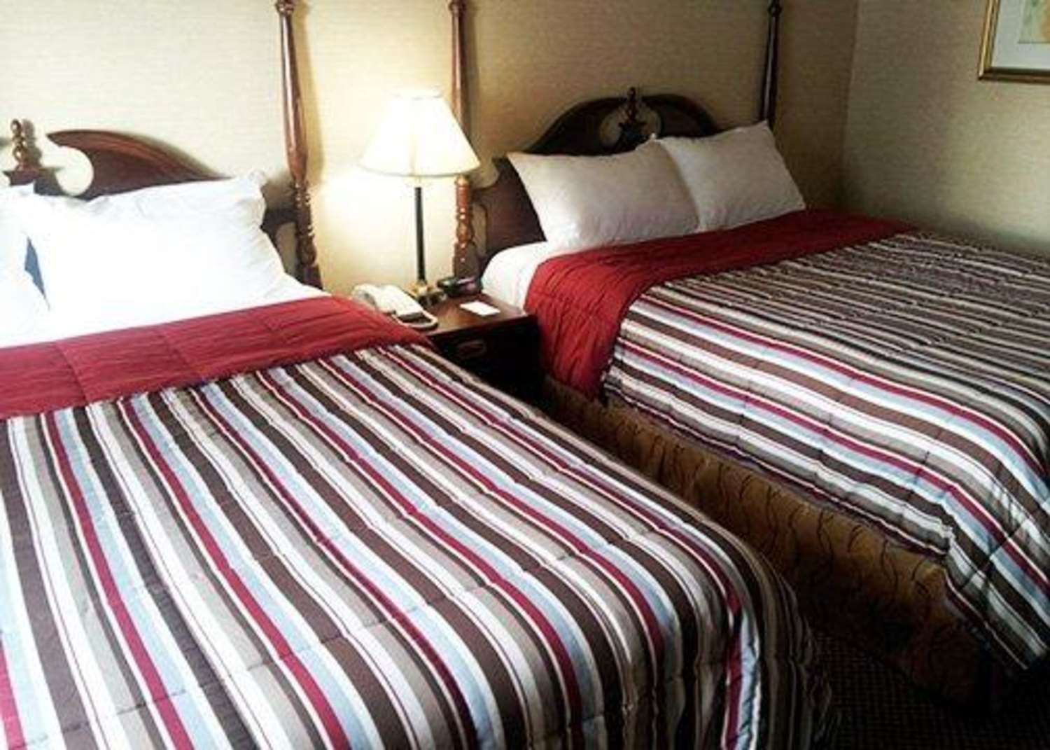 Room - Econo Lodge City Centre Kingston