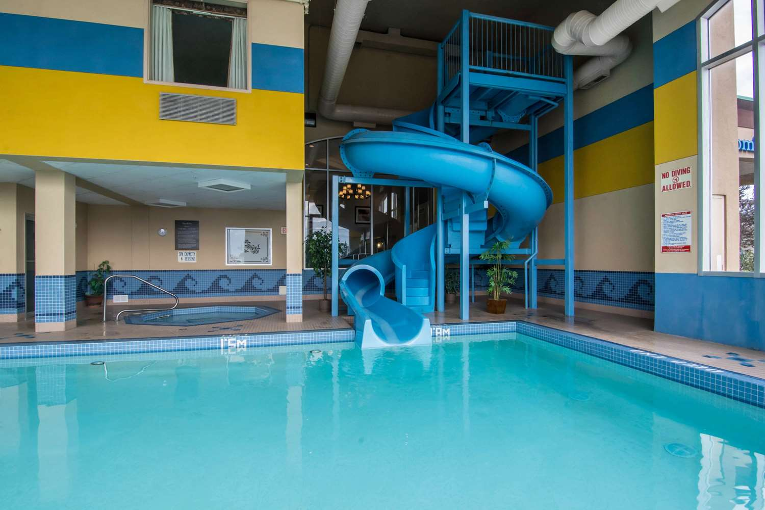 Pool - Comfort Inn & Suites Airport Calgary