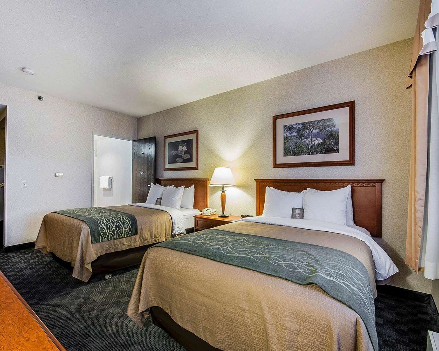 Room - Comfort Inn & Suites Conference Centre Victoria